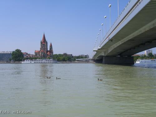 Reichsbrücke Donaublick