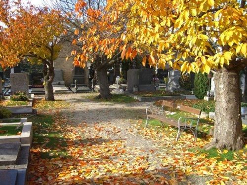 Friedhof Hietzing
