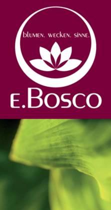 Ebosco