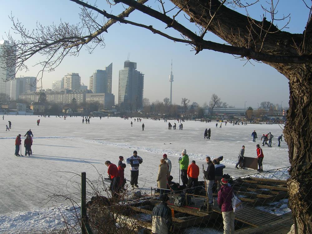 Winter auf der Alten Donau